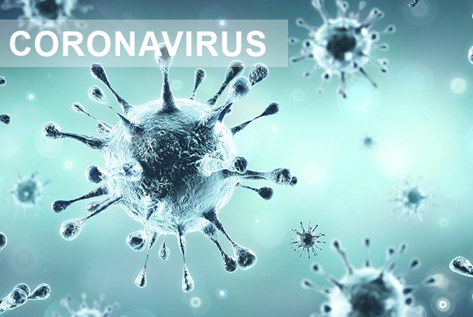 Cluster.b & Coronavirus